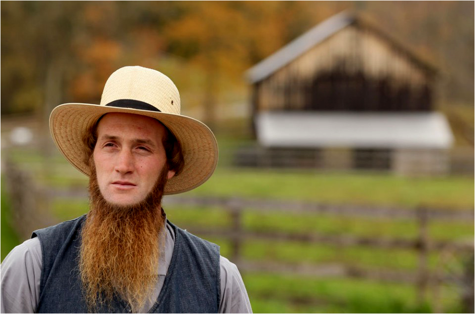 amish people in america The amish have settled in as many as twenty-four states and canada, and central america, though about 65% are located in pennsylvania, ohio and indiana the greatest concentration of amish is in holmes and adjoining counties in northeast ohio, about 78 miles south of cleveland.