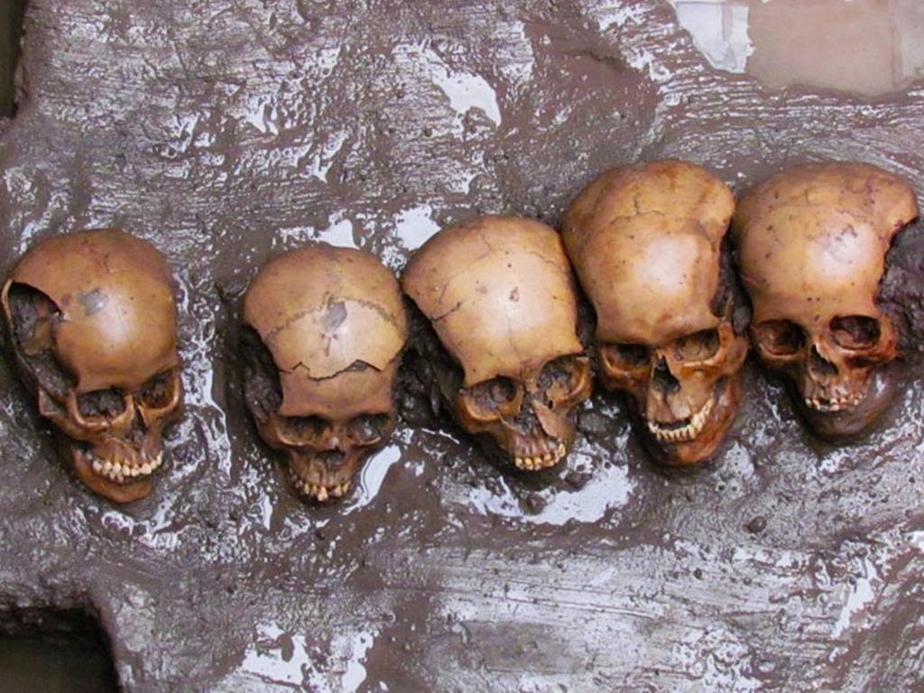 pierced skulls found under sacrifice stone
